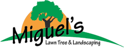 Miguel's Lawn Tree & Landscaping in Charlottesville